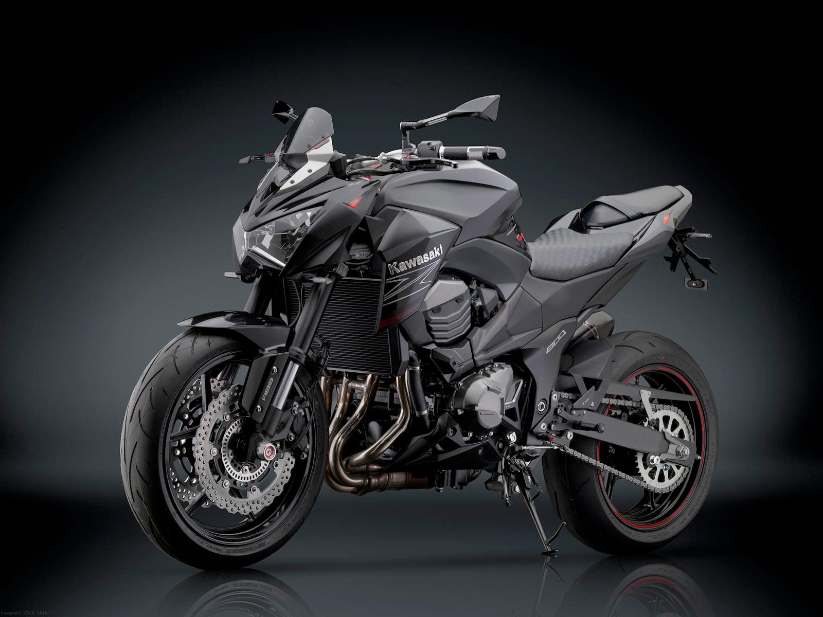 Rizoma Carbon Fiber Chain Guard Kawasaki Z800 2016