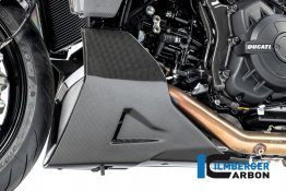 Carbon Fiber LEFT SIDE Bellypan by Ilmberger Carbon