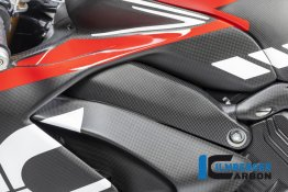Carbon Fiber Left Side Frame Cover by Ilmberger Carbon