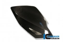 Carbon Fiber Fairing Side Panel by Ilmberger Carbon
