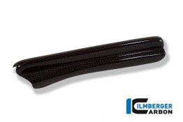 Carbon Fiber Brake Line Cover by Ilmberger Carbon