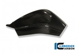 Carbon Fiber Swingarm Cover Set by Ilmberger Carbon