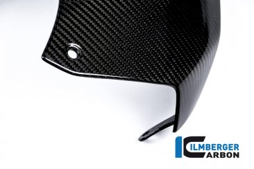 Carbon Fiber Upper Tank Cover by Ilmberger