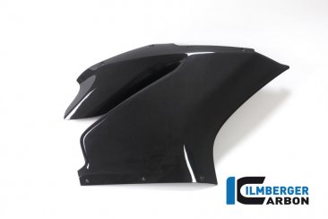 Carbon Fiber Right Side Fairing Panel by Ilmberger Carbon