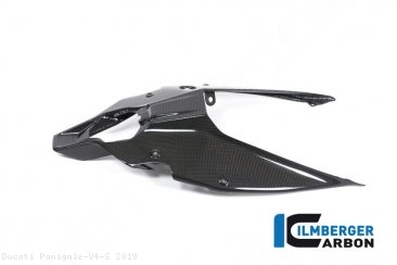 Carbon Fiber Rear Undertail Cover by Ilmberger Carbon Ducati / Panigale V4 S / 2019