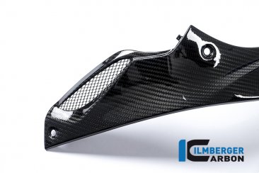 Carbon Fiber Left Side Tank Panel by Ilmberger Carbon
