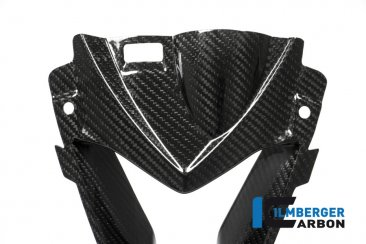 Carbon Fiber Air Intake by Ilmberger Carbon