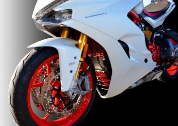 Aluminum Radiator Guard by Ducabike