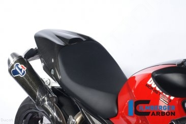 Carbon Fiber Passenger Seat Cover by Ilmberger Carbon Ducati / Monster 696 / 2012