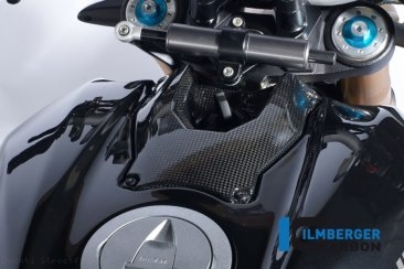 Carbon Fiber Ignition Cover by Ilmberger Carbon Ducati / Streetfighter 1098 S / 2009