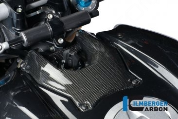 Carbon Fiber Ignition Cover by Ilmberger Carbon Ducati / Streetfighter 848 / 2010