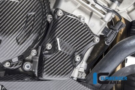 Carbon Fiber Ignition Rotor Cover by Ilmberger Carbon BMW / S1000XR / 2019