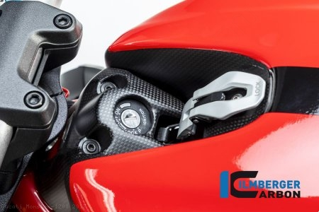 Carbon Fiber Ignition Switch Cover by Ilmberger Carbon Ducati / Monster 1200 / 2017