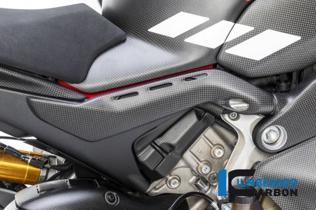 Carbon Fiber Frame Tail Cover by Ilmberger Carbon