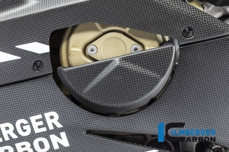 Carbon Fiber Alternator Cover by Ilmberger Carbon Ducati / Panigale V4 S / 2019