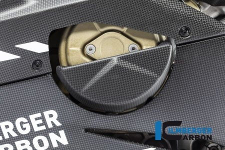 Carbon Fiber Alternator Cover by Ilmberger Carbon Ducati / Panigale V4 Speciale / 2018