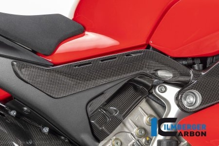 Carbon Fiber Frame Tail Cover by Ilmberger Carbon Ducati / Panigale V4 R / 2019