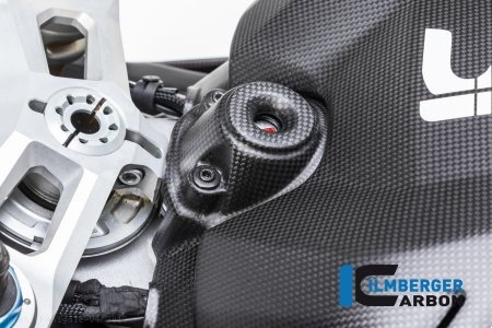 Carbon Fiber Ignition Cover by Ilmberger Carbon Ducati / Panigale V4 / 2019