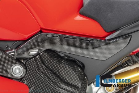 Carbon Fiber Frame Tail Cover by Ilmberger Carbon Ducati / Panigale V4 Speciale / 2019