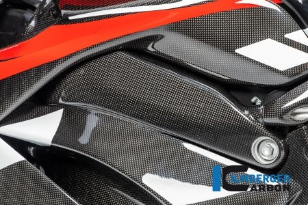 Carbon Fiber Left Side Frame Cover by Ilmberger Carbon Ducati / Panigale V4 S / 2018