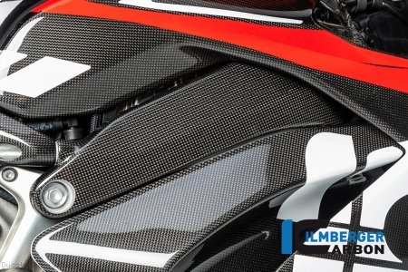 Carbon Fiber Right Side Frame Cover by Ilmberger Carbon Ducati / Panigale V4 S / 2019