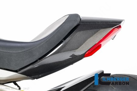 Carbon Fiber Left Tail Fairing by Ilmberger Carbon Ducati / XDiavel / 2017