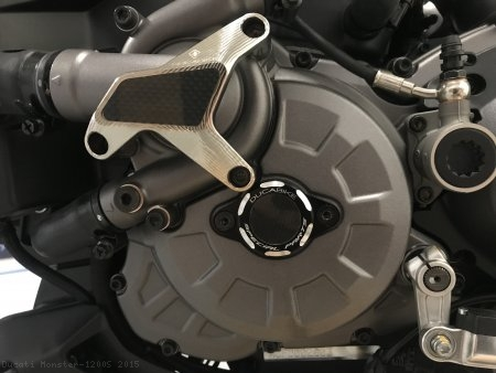 Water Pump Guard with Carbon Inlay by Ducabike Ducati / Monster 1200S / 2015