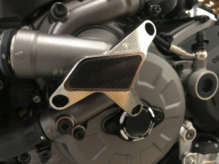 Water Pump Guard with Carbon Inlay by Ducabike Ducati / Monster 1200 / 2019
