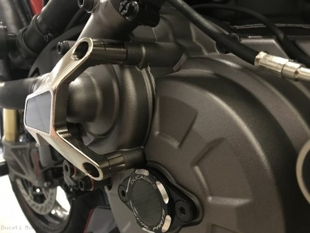 Water Pump Guard with Carbon Inlay by Ducabike Ducati / Monster 1200R / 2018