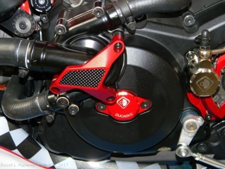Water Pump Guard with Carbon Inlay by Ducabike Ducati / Hypermotard 939 / 2017