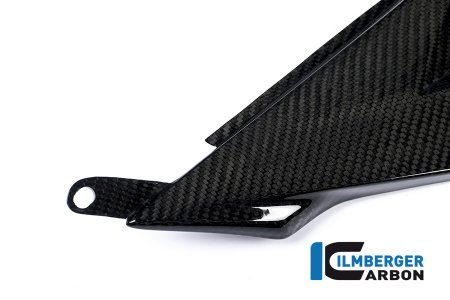 Carbon Fiber Right Side Tank Panel by Ilmberger Carbon