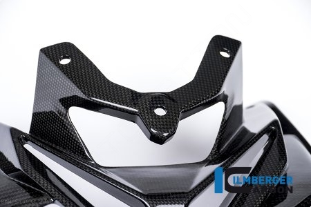 Carbon Fiber Front Fairing by Ilmberger Carbon BMW / S1000R / 2019