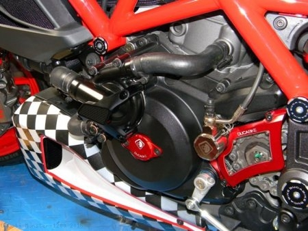 Water Pump Guard with Carbon Inlay by Ducabike Ducati / Monster 1200 / 2015