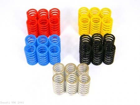 Dry Clutch 6 Piece Spring Kit by Ducabike Ducati / 996 / 2001