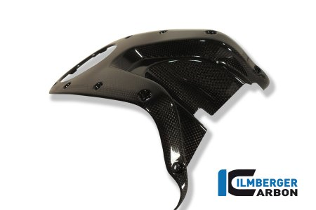 Carbon Fiber Gas Tank Center Cover by Ilmberger Carbon