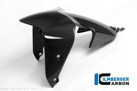 Carbon Fiber Front Fender by Ilmberger Carbon Ducati / Monster 1200 / 2018