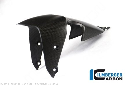 Carbon Fiber Front Fender by Ilmberger Carbon Ducati / Monster 1200 25 ANNIVERSARIO / 2019