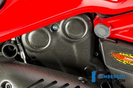 Carbon Fiber Vertical Belt Cover by Ilmberger Carbon Ducati / Monster 821 / 2017