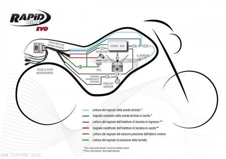Sensational 2014 Bmw S1000Rr Wiring Diagram Review Ebooks Better Wiring Wiring Cloud Planhouseofspiritnl