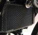 Radiator Guard by Evotech Performance Kawasaki / Ninja 300 / 2018
